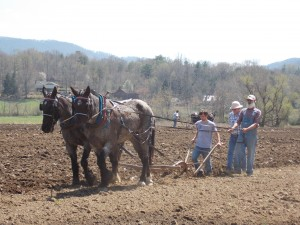 Warren Wilson College Spring Plow Day